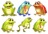 Six different frogs — Stock Vector