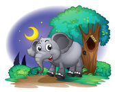 An elephant in the forest — Stock Vector
