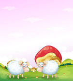 Two sheeps at the hill with mushrooms — Stock Vector