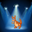 A kangaroo at the center of the stage with spotlights — Stock Vector