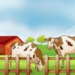 A farm with two cows inside the fence — Stock Vector