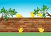 A wall with five ducklings — Stock Vector