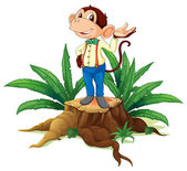 A stump with a male monkey — Stock Vector