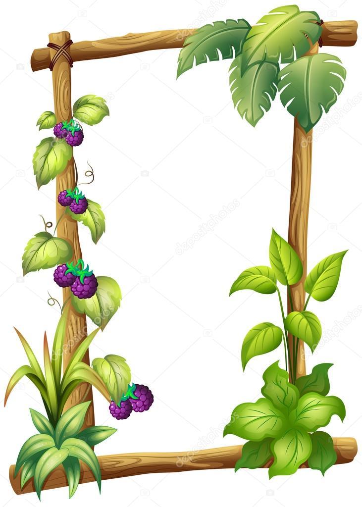 Uma moldura de madeira com plantas de videira vetor de - Marcos para plantas ...