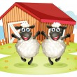 Two black sheeps with a barn at the back — Stock Vector