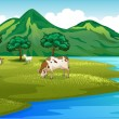 Cows and goat at the riverbank — Stock Vector