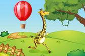 A giraffe running and a floating hot air balloon — Stock Vector