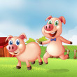 Two pigs at the farm — Stock Vector