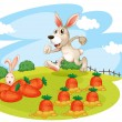 A bunny running along the garden with carrots — Stock Vector