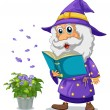 A wizard holding a book beside a pot with plant — Stock Vector