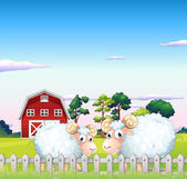 Two sheeps inside the fence with a barn at the back — Stock Vector