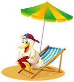 A duck reading at the beach — Stock Vector