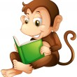 A monkey sitting while reading a book — Stock Vector