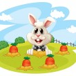 A rabbit at the farm with carrots — Stock Vector