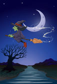 A witch travelling with her broomstick in the middle of the nigh — Stock Vector