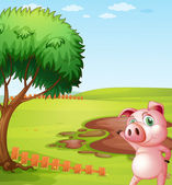 A pig introducing the pig farm — Stock Vector