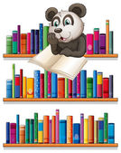 A panda reading above the wooden shelf with books — Stock Vector