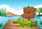 A crocodile near the pond — Stock Vector