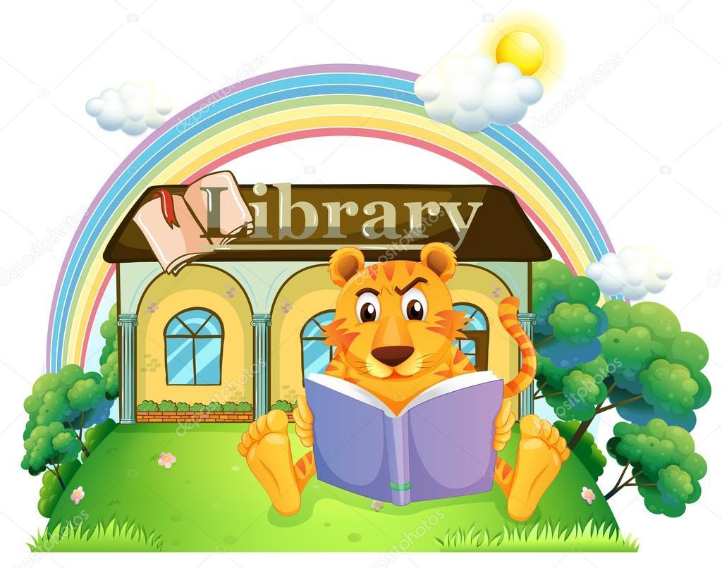 Una ragazza all 39 interno di una casa piena di libri - Casa piena di zanzare ...