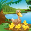 A mother duck with her ducklings — Stock Vector