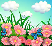 The two butterflies in the garden — Stock Vector