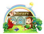 A monkey and a parrot reading in front of the library — Stock Vector