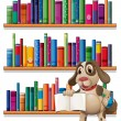 Dog holding book in front of bookshelves — Stock Vector #27920577