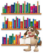 A dog holding a book in front of the bookshelves — Stock Vector