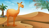 A desert with a lonely camel — Stock Vector