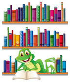 A smiling frog reading a book — Stock Vector