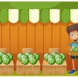 A boy holding a basket of watermelons — Stock Vector #28311205