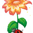 A bug under the giant flower — Stock Vector