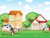 Three cows eating in front of the neighborhood — Stock Vector