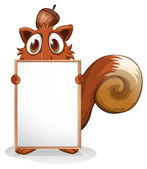 A squirrel with an empty whiteboard — Stock Vector