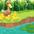 Stock Vector: Mother duck with her ducklings at river