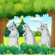 Three sealions in the forest — Stock Vector