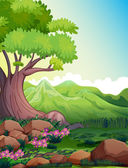 A big tree at the forest — Stock Vector