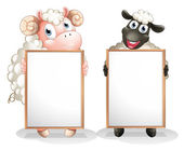 Two sheeps with empty boards — Stock Vector