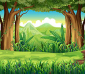 The green forest — Stock Vector