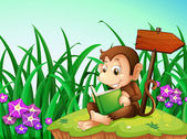 A monkey reading a book beside the arrowboard — Stock Vector