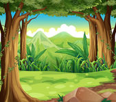 A green forest across the high mountains — Stock Vector