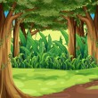 Vector de stock : Giant trees in forest