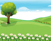 A hilltop with a garden and a giant tree — Stock Vector