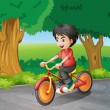 Stock Vector: A boy biking near the big trees