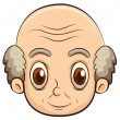 Stock Vector: Bald old man