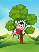 A playful monkey playing at the tree — Stock Vector