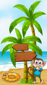 A monkey at the beach with a toy standing near the palm tree — Stock Vector