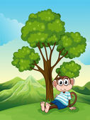 A tired monkey resting under the tree at the hilltop — Stock Vector