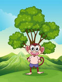 A cute playful monkey at the hilltop standing under the tree — Stock Vector