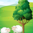 Two sheeps near the tree — Stock Vector